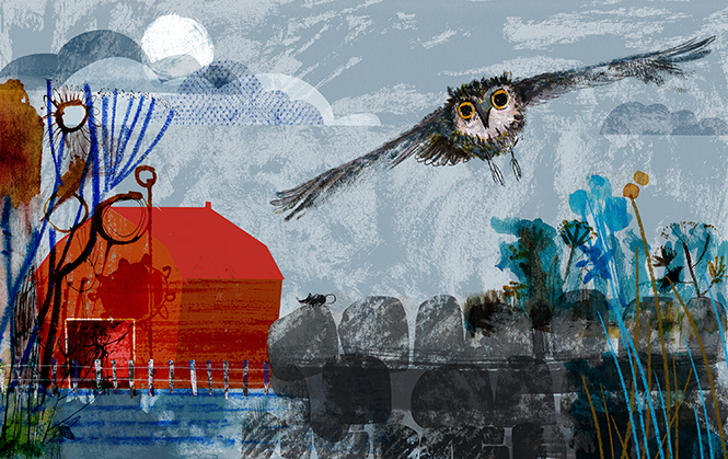 Moth-Quiet-Owl-JillCalder2015